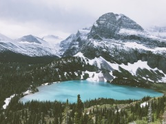 View of Grinnell Glacier
